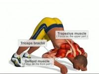 Chest Workout – vyrýsované hrudní svaly s chytrým trenérem
