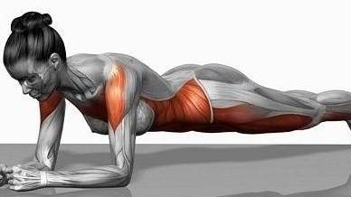 Plank cvičení - cvičte s chutí