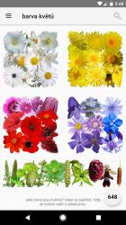 Barva květů