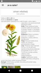 Profil rostliny